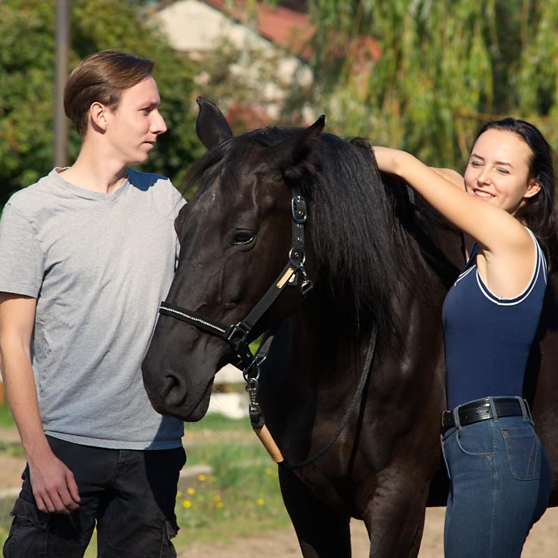 Koń to przyjaciel człowieka