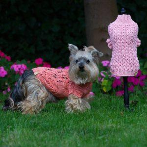Ubranie dla psa lub kota sfinksa, sweterek dla psa lub kota