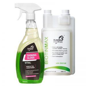 Zestaw Odżywka Shining Gloss Vital + Biotin Max