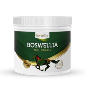 HorseLinePRO Boswellia Serrata sztywność stawów i mięśni