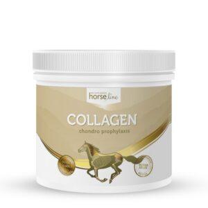 HorseLinePRO Kolagen typu II
