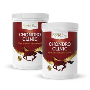 HorseLinePRO ChondroClinic pomaga zwalczyć ogniska zapalne i bólowe w obrębie stawów