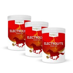 HorseLinePRO Electrolyte Power Plus