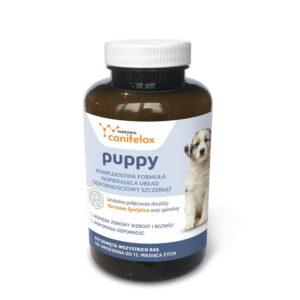 Canifelox puppy wzmocnienie organizmu szczeniaka